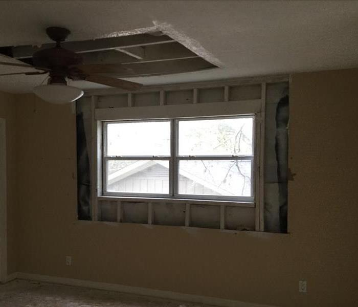 Mold Damage in San Antonio After