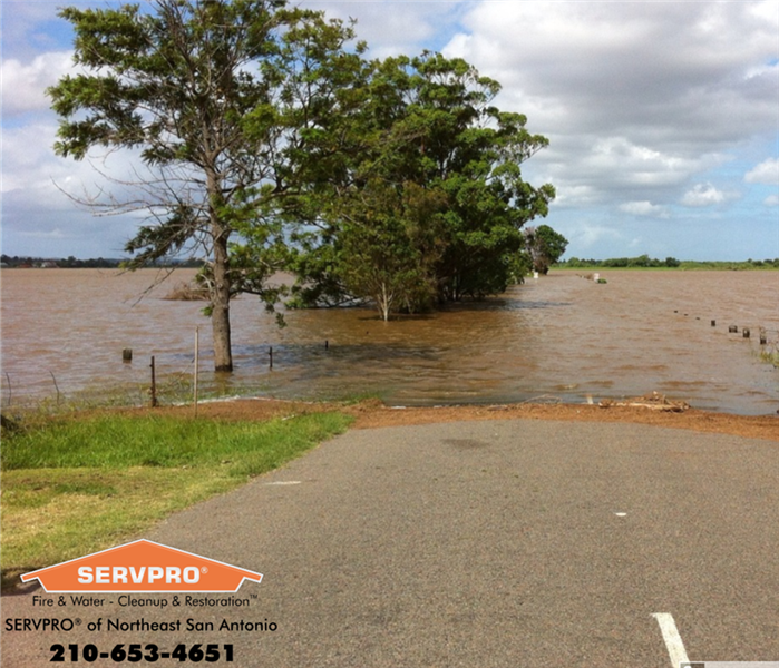 Country road that has high flood waters.  Tree is sitting in the high water. SERVPRO of Northeast San Antonio info and logo